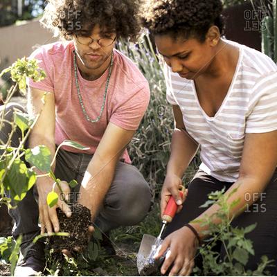easyfundraising-ideas-gardening
